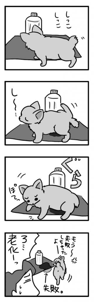 ぐらぐら トイレ 犬 チワワ 老犬 老化 足 ヨロ よろ シッコ 失敗 漫画 まんが マンガ