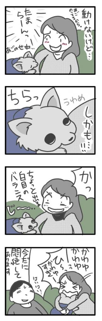 うわめ 上目 遣い 犬 チワワ 福 ガウリン まんが 漫画 マンガ 飼主 バカ