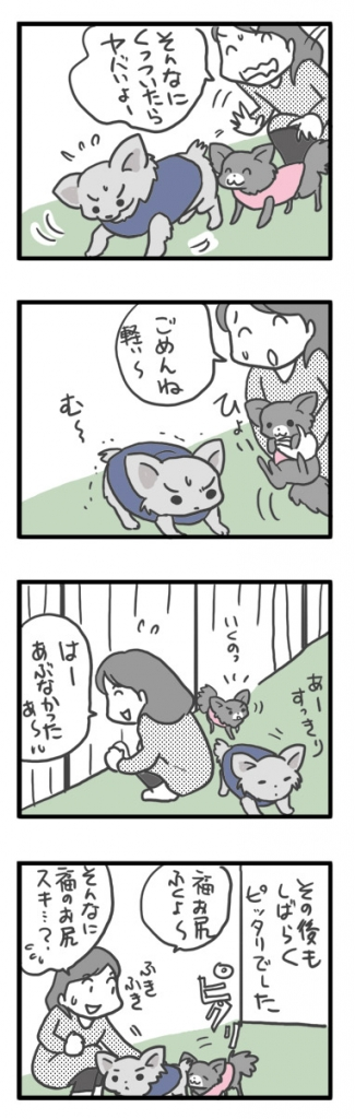 昭和 記念 公園 ドッグラン 犬 チワワ ガウリン 吠え 漫画 マンガ まんが