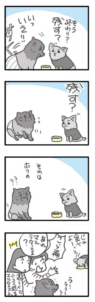 チワワ 老犬 福 ガウリン 吠 ポメ 幼なじみ 食 唸る 爺 老 ワン 犬 まんが 漫画 マンガ