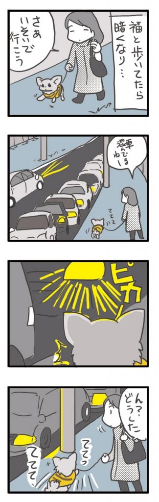 チワワ 老犬 福 ガウリン 吠 目 老眼 光 眩し ヘッドライト 車 爺 老 ワン 犬 まんが 漫画 マンガ