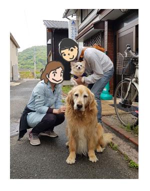 チワワ 老犬 福 吠 四国 北条 海賊 村上 博多の 伯方の 潮 工場 ペット 泊 爺 犬 まんが 漫画 マンガ