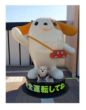 チワワ 老犬 福 吠 名古屋 みちまる ドッグラン SA きしめん 渋滞 箱根  犬 まんが 漫画 マンガ