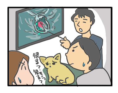 チワワ 老犬 福 吠 おばあちゃん おじいちゃん シニア ペット 心臓 心臓病 クッシング 爺 犬 まんが 漫画 マンガ