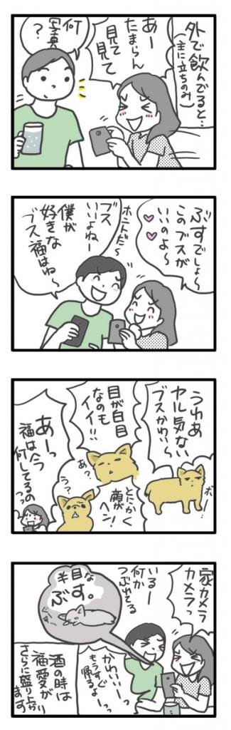チワワ 老犬 福 吠 ブス ブサイク 好 可愛い 好み ぶす ぶさ 爺 犬 まんが 漫画 マンガ