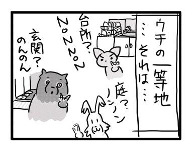 チワワ 老犬 福 吠 おばあちゃん おじいちゃん シニア ペット 思い出 子犬 昔 老人 家族 ファミリー 爺 犬 まんが 漫画 マンガ