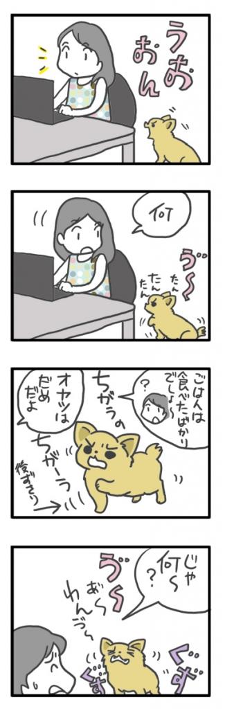 チワワ 老犬 福 吠 おじいちゃん シニア 子供 がえり ペット 心臓 心臓病 クッシング 爺 犬 まんが 漫画 マンガ