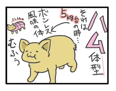 チワワ 老犬 福 吠 フード 変 変化 おじいちゃん シニア ペット 心臓 心臓病 クッシング 爺 犬 まんが 漫画 マンガ