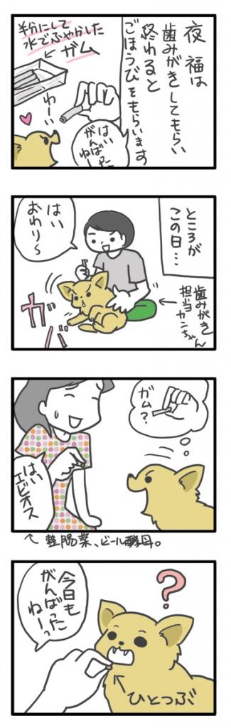 チワワ 老犬 福 吠 おばあちゃん おじいちゃん シニア ペット 歯 ケア オーラル ガム ご褒美 爺 犬 まんが 漫画 マンガ