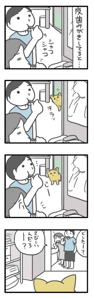 チワワ 老犬 福 吠 おじいちゃん シニア ペット 歯磨き 口臭 見に ブラシ 爺 犬 まんが 漫画 マンガ