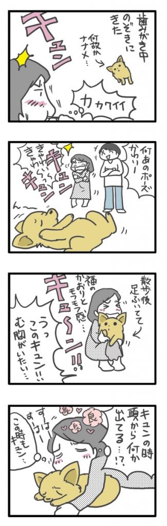 チワワ 老犬 福 吠 おじいちゃん シニア ペット アンチ 老化 防止 若 返 オキシトシン ホルモン 爺 犬 まんが 漫画 マンガ