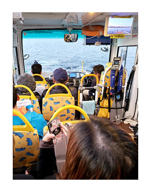 カバ kaba KABA お台場 陸 海 両用 バス 乗り物 浅草 ホッピー イラスト 絵 まんが 漫画 マンガ