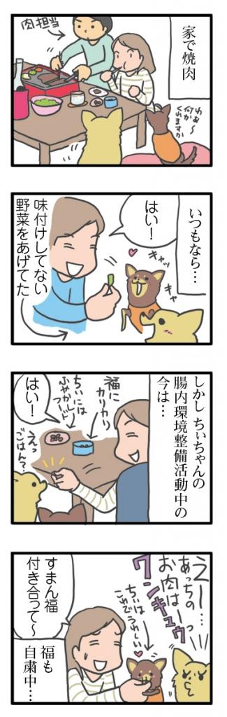 犬 心臓病 保護犬 老犬 チワワ 多頭 焼肉 野菜 下痢 胃腸炎 治療 我慢 イラスト 絵 まんが 漫画 マンガ