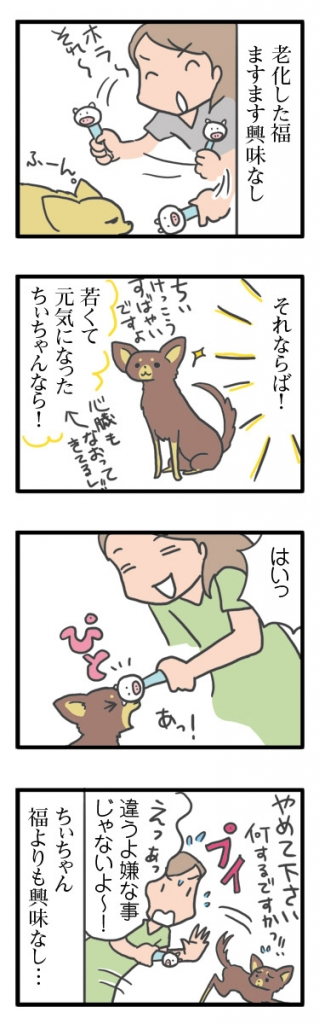 犬 心臓病 保護犬 老犬 チワワ 多頭 遊び ぬいぐるみ 遊ばない 嫌い おもちゃ オモチャ イラスト 絵 まんが 漫画 マンガ