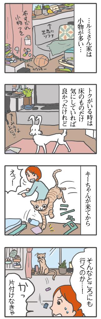 猫 ネコ 保護 保護猫 キー キーウィ 虎 骨 水 イラスト 老犬 絵 まんが 漫画 マンガ