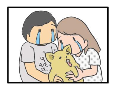 犬 お礼 感謝 ありがとう 昇 虹 天国  胸水 てんかん 発作 腫瘍 死 様子 状況 明け方 逝 癌 ガン 分子標的薬 抗がん剤 老犬 心臓 保護犬 チワワ イラスト 絵 まんが 漫画 マンガ