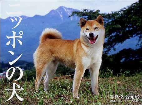 ニッポンの犬 2006年カレンダー