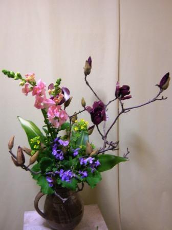 紫モクレン