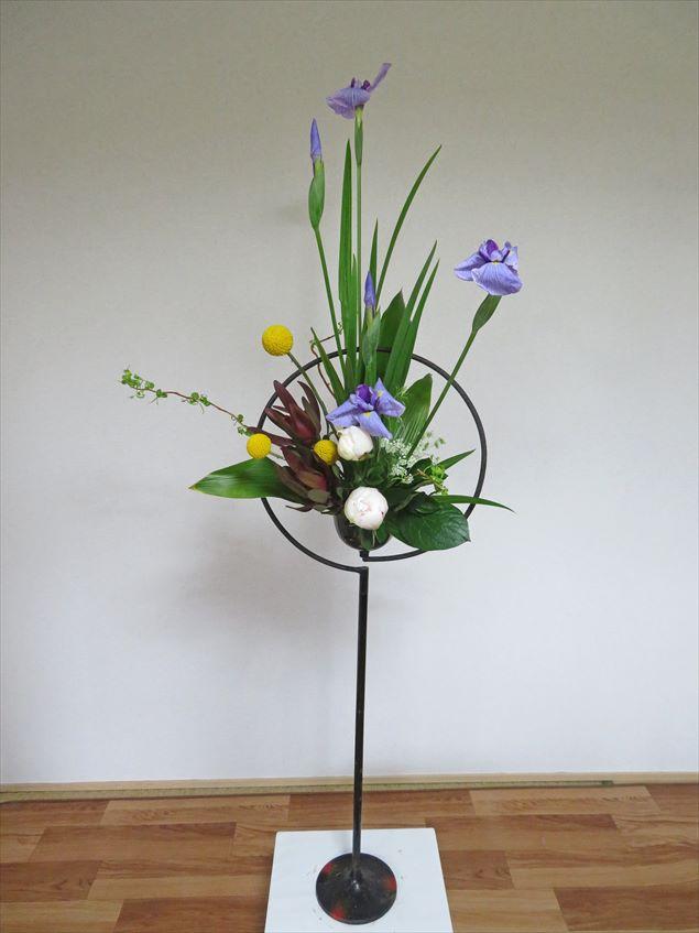 令和の花 シャロン