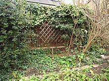 チューリップを植える候補地2