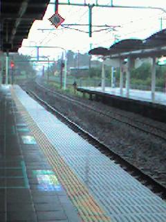 20061006_28247.jpg