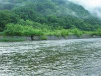 ずいぶん水量が減った寒河江川