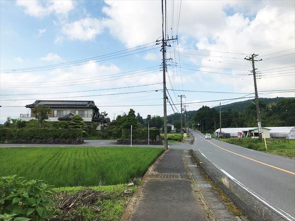 ?富士岡地区・二子(2019-06-25) (5)_R.jpg
