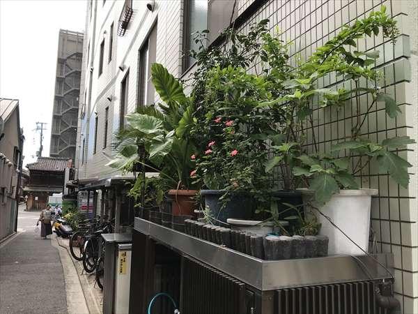写真 2019-09-12 12 54 34_炭の座図子 (7).jpg