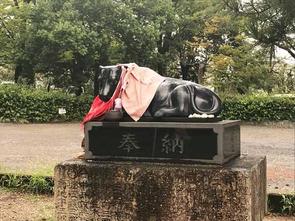 写真 2019-09-13 12 25 29_北野天満宮 (10).jpg