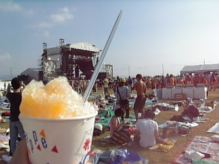 かき氷(マンゴー)