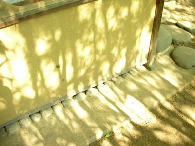 竹の間を光が透ける