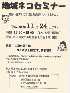 sibuya_kokuti16.11