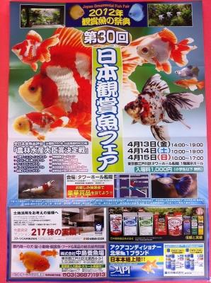 観賞魚フェア ポスター