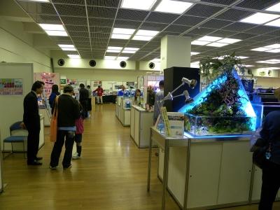 観賞魚フェア会場
