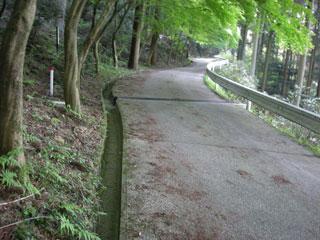 岩湧寺そばの坂