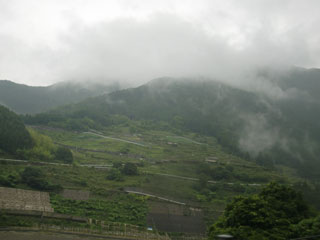 雨に煙る景色
