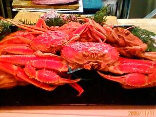 香住蟹(かすみカニ)