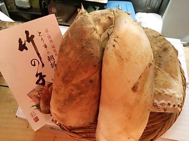 京都産白子筍