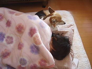 そっと添い寝。