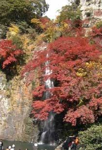 箕面の滝(紅葉の季節)