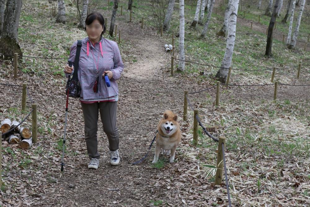 196A4137自然園を歩くぼかし.jpg