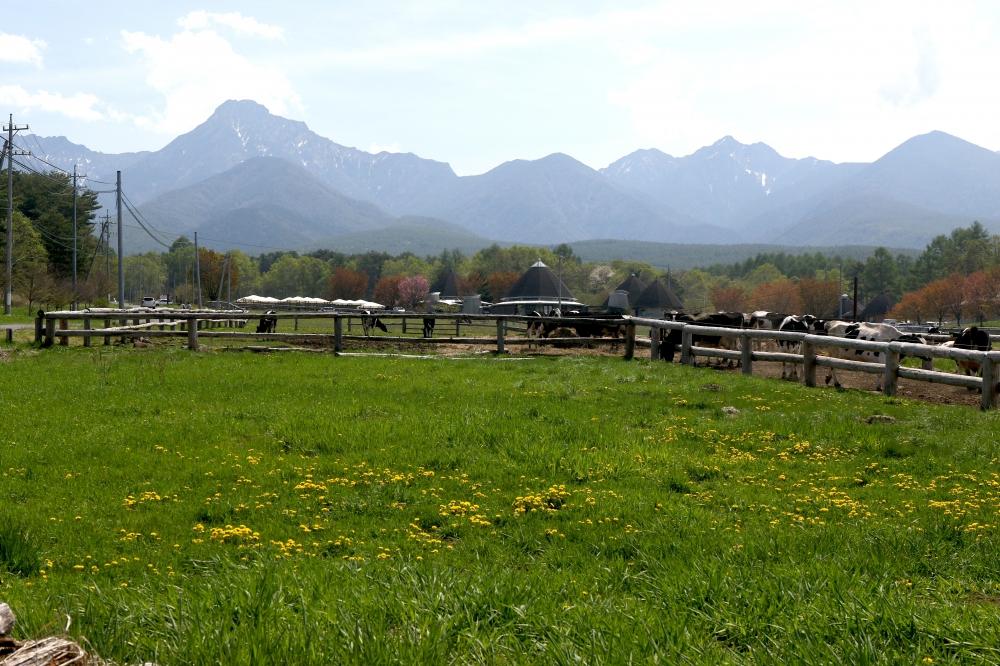 196A4938農場から八ヶ岳.JPG