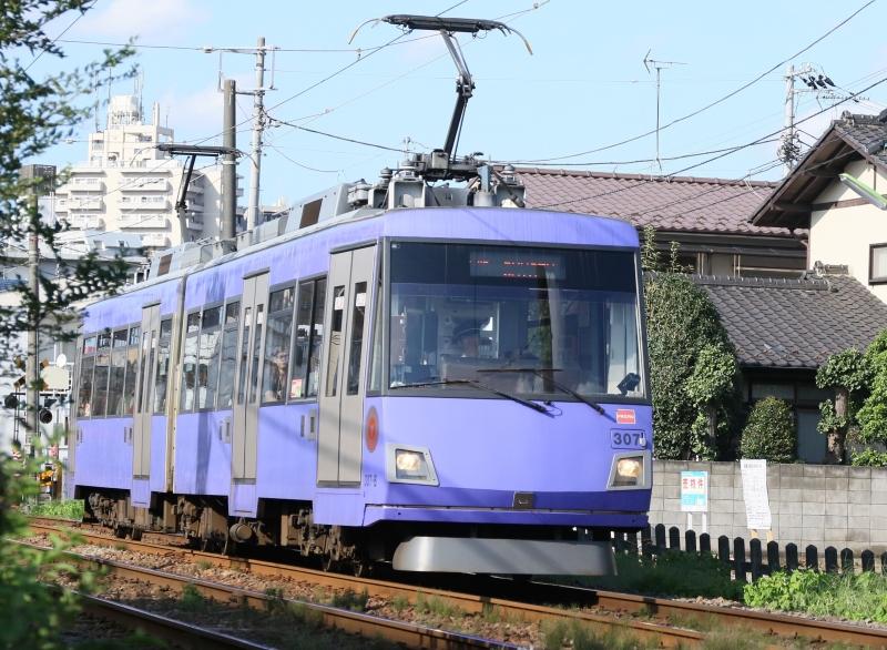 196A9834 307F紫.jpg