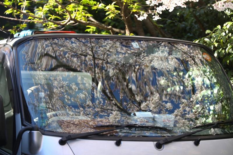 0Y6A4275清掃車.JPG