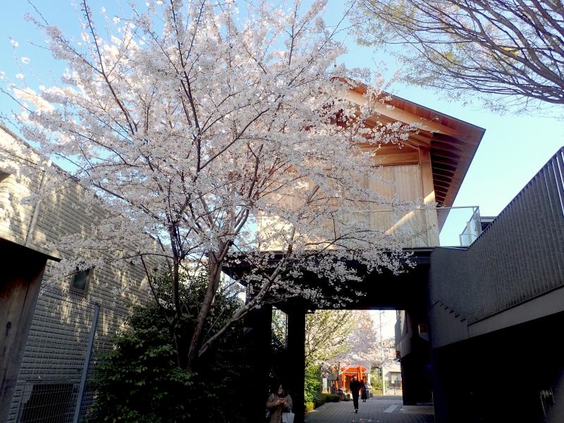 P4032088蛍雪神社.JPG