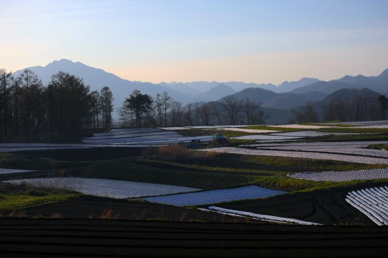 0Y6A7318御蔵山.JPG