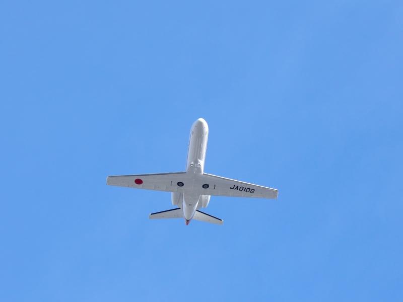 0Y6A0834低空飛行.JPG