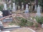 野田山墓地 お墓掃除