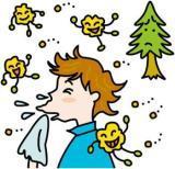 花粉症を説明した図