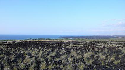 ハワイ島 コナ空港近く